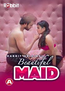 Beautiful Maid (2021) Hindi Web Series