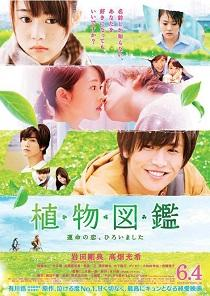 Evergreen Love (2016)