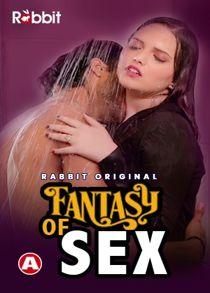 Fantasy of Sex (2021) Hindi Web Series