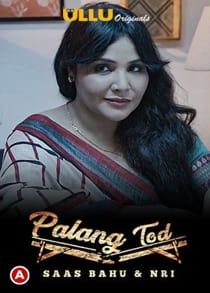 P4lang Tod S4as B4hu and NRI (2021) Complete Hindi Web Series