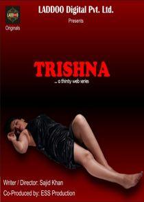 Trishna (2021) Hindi Web Series